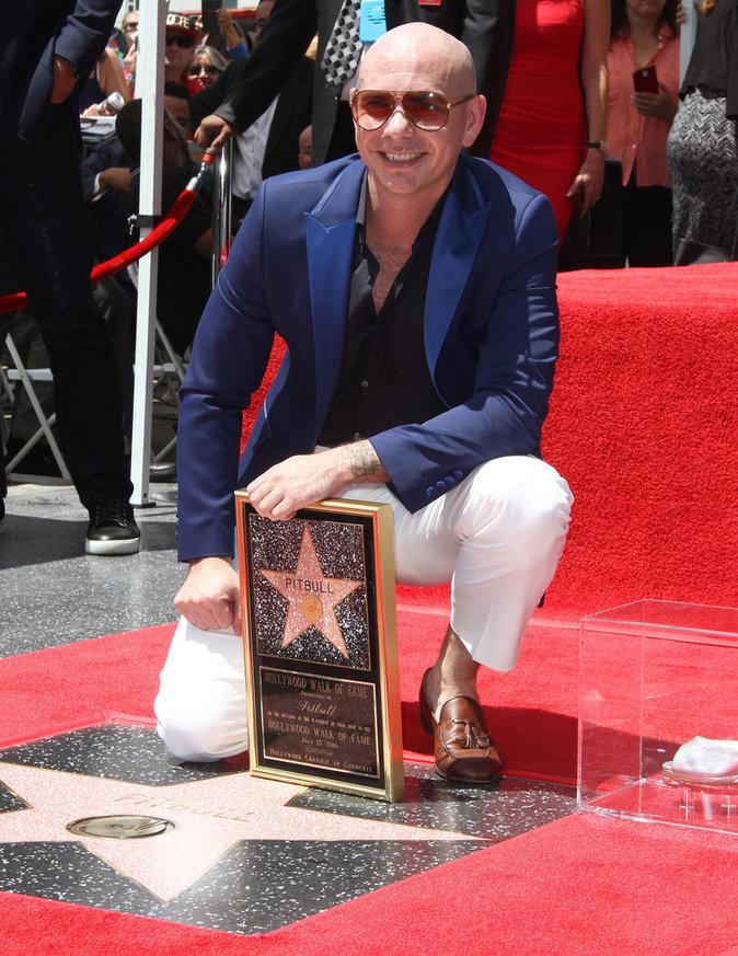 Pitbull à Los Angeles le 15 juillet 2016