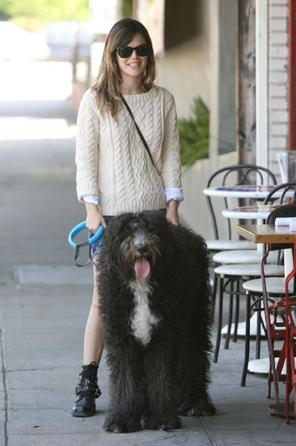 Rachel Bilson et son toutou chéri !