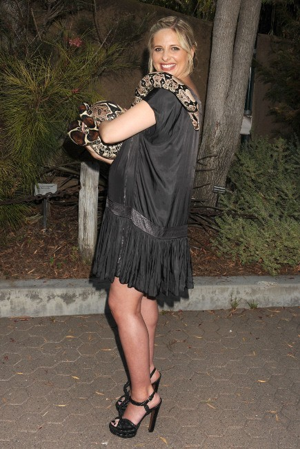 Sarah Michelle Gellar, l'amie des bêtes !
