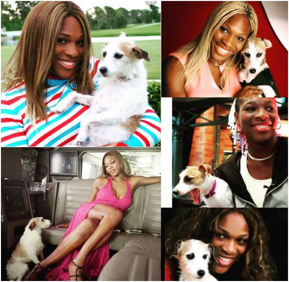 Photos : Serena Williams endeuillée : la star du tennis inconsolable...