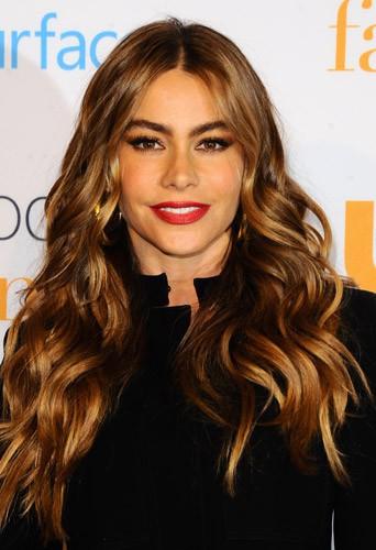 Découvrez le top 20 des acteurs les mieux payés de la télé US ... Sofia Vergara