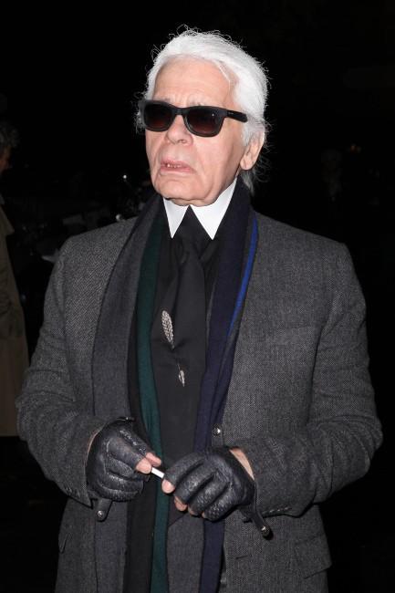 Karl Lagerfeld à Paris pour la soirée Dior, le 12 novembre 2013.
