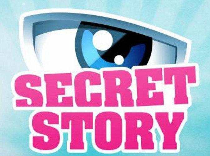 """#ProgrammeTV : """"Secret Story"""", """"La vengeance aux yeux clairs"""", """"L'émission politique"""", la sélection de Public !"""