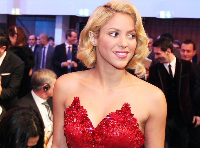 Shakira : chevalier de l'Ordre des Arts et des Lettres ! (réactualisé)
