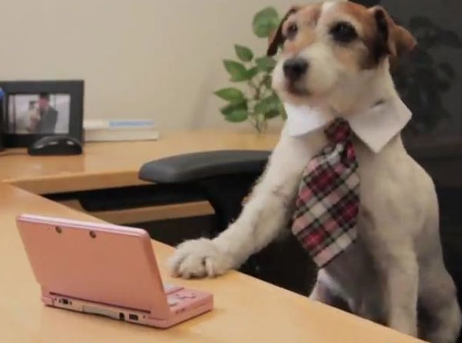 Vidéo : Uggie, le chien de The Artist : première journée de boulot chez Nintendo !
